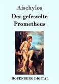 Der gefesselte Prometheus (eBook, ePUB)