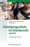 Kündigungsschutz im Arbeitsrecht von A-Z (eBook, ePUB)