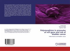 Polymorphism in promoter of mif gene and risk of bladder cancer
