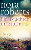 Ein Leuchten im Sturm (eBook, ePUB)