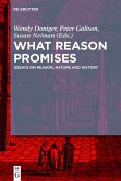 What Reason Promises (eBook, ePUB)