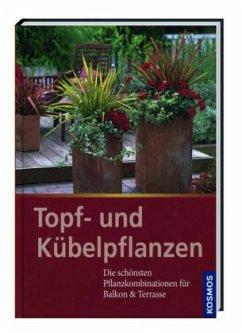 Topf- und Kübelpflanzen - Harrison, Johanna