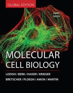 Molecular Cell Biology - Lodish, Harvey; Berk, Arnold; Kaiser, Chris A.