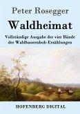 Waldheimat (eBook, ePUB)