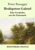 Heidepeters Gabriel (eBook, ePUB)