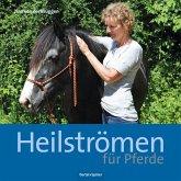 Heilströmen für Pferde