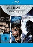 Werewolf Collection: Wolfman, American Werewolf in London, Werwolf - Das Grauen lebt unter uns