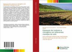 Estoques de carbono e nitrogênio em diferentes manejos do solo