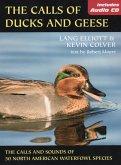 The Calls of Ducks & Geese (eBook, ePUB)