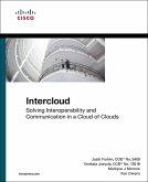 Intercloud (eBook, ePUB)