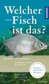 Welcher Fisch ist das? (eBook, PDF)