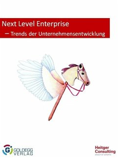 Next Level Enterprise (eBook, ePUB) - Heitger, Barbara