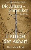 Feinde der Ashari (eBook, ePUB)