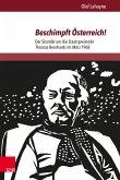Beschimpft Österreich! (eBook, PDF)