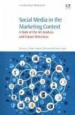 Social Media in the Marketing Context