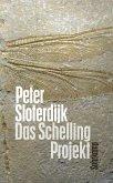 Das Schelling-Projekt (eBook, ePUB)