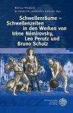 Schwellenräume - Schwellenzeiten im Werk von Irène Némirovsky, Leo Perutz und Bruno Schulz (eBook, PDF)
