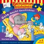 Benjamin Blümchen - Gute-Nacht-Geschichten - Gute Nacht im Zoo (MP3-Download)