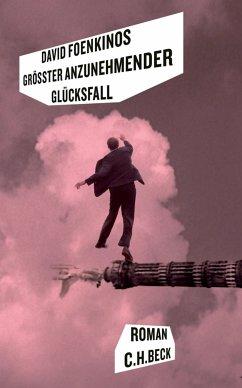 Größter anzunehmender Glücksfall (eBook, ePUB) - Foenkinos, David