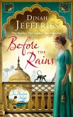 Before the Rains (eBook, ePUB)