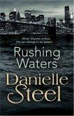 Rushing Waters (eBook, ePUB)