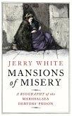 Mansions of Misery (eBook, ePUB)