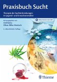 Praxisbuch Sucht (eBook, PDF)