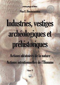 Industries, vestiges archéologiques et préhistoriques - Action aléatoire de la nature & Action intentionnelle de l'Homme - Volume VI (eBook, ePUB)