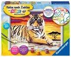 Ravensburger 28553 - Malen nach Zahlen, majestätischer Tiger