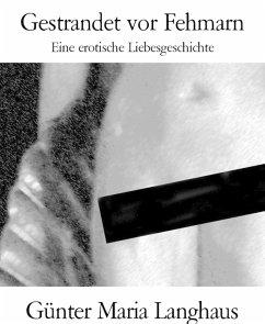 Gestrandet vor Fehmarn (eBook, ePUB)