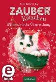 Weihnachtliche Überraschung / Zauberkätzchen Bd.12 (eBook, ePUB)