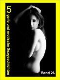 5 geile und erotische Sexgeschichten 26 (eBook, ePUB)