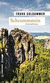 Schrammstein / Hauptkommissar Falk Tauner Bd.3 (Mängelexemplar)