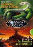 Codewort Risiko - Im Bann der weißen Schlange\Codewort Risiko - Das Erwachen des Feuerbergs (Mängelexemplar)