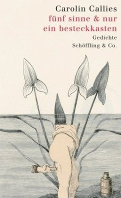 fünf sinne & nur ein besteckkasten (Mängelexemplar) - Callies, Carolin