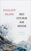 Bei Sturm am Meer (eBook, ePUB)