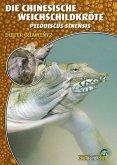 Die Chinesische Weichschildkröte (eBook, ePUB)