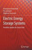 Electric Energy Storage Systems