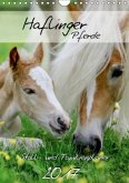 Haflinger Pferde - Stall- und Familienplaner 2017 (Wandkalender 2017 DIN A4 hoch)
