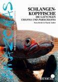 Schlangenkopffische (eBook, ePUB)