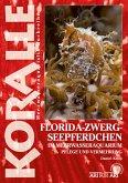 Florida-Zwergseepferdchen im Meerwasseraquarium (eBook, ePUB)