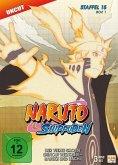 Naruto Shippuden - Staffel 15, Box 1 (Folgen 541-554) Uncut Edition