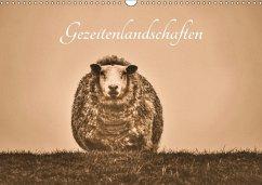 Gezeitenlandschaften (Wandkalender 2017 DIN A3 quer) - Lieckfeldt, Thorleif