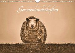 Gezeitenlandschaften (Wandkalender 2017 DIN A4 quer) - Lieckfeldt, Thorleif