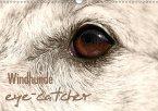 Windhunde eye-catcher (Wandkalender 2017 DIN A3 quer)