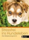 Stressfrei ins Hundeleben (eBook, PDF)