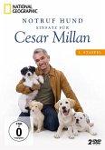 Notruf Hund - Einsatz für Cesar Millan: 3. Staffel (2 Discs)