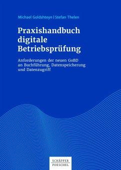 Praxishandbuch digitale Betriebsprüfung (eBook, ePUB) - Goldshteyn, Michael; Thelen, Stefan
