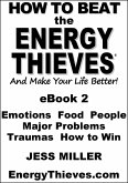 How To Beat The Energy Thieves And Make Your Life Better: eBook2 (eBook, ePUB)