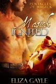 Magick Ignited ( a paranormal romance / Pentacles of Magick series #2 ) (eBook, ePUB)